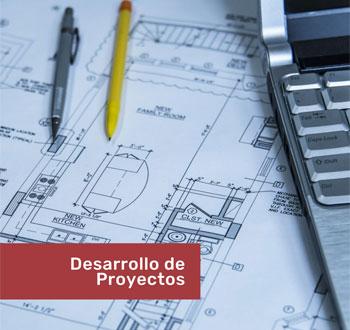 desarrollo de proyectos y asesoria